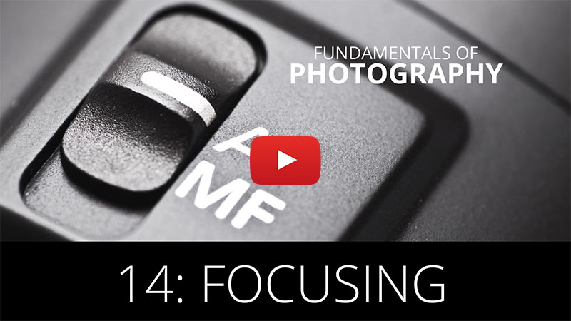 Fundamentals of Photography - Focusing