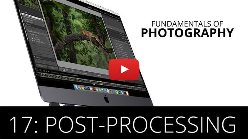 Fundamentals of Photography - Post - Processing