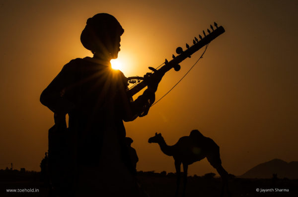 pushkar camel fair rajasthan 7