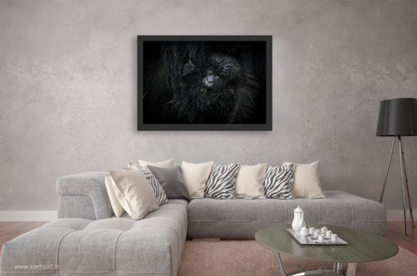 1179 gorilla baby frame