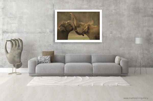 elephant combat frame