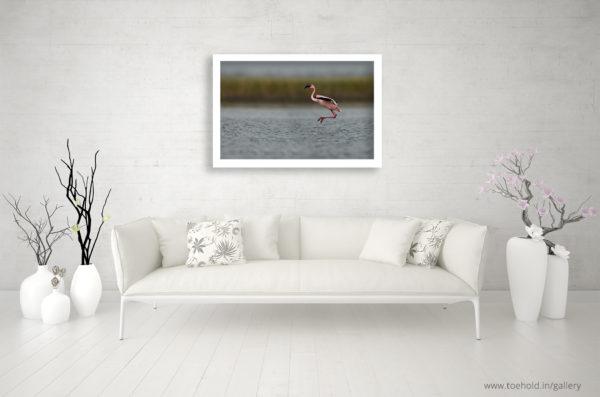 flamingo flight frame