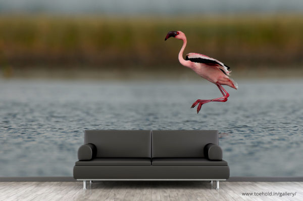 flamingo flight wallpaper