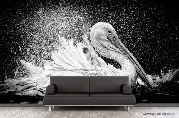Great White Pelican Wallpaper