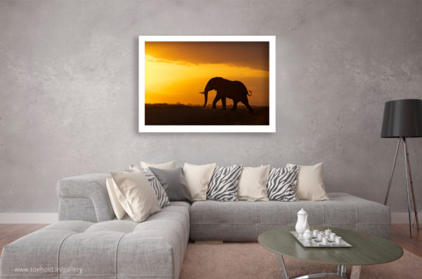 elephant silhouette frame