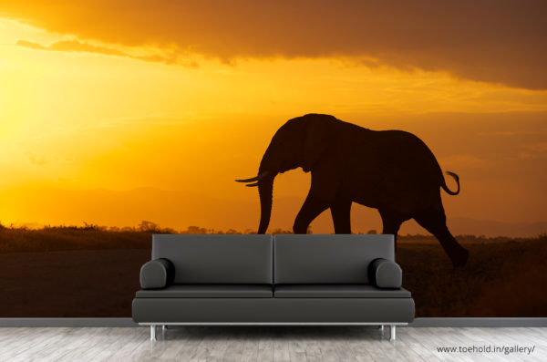 elephant silhouette wallpaper
