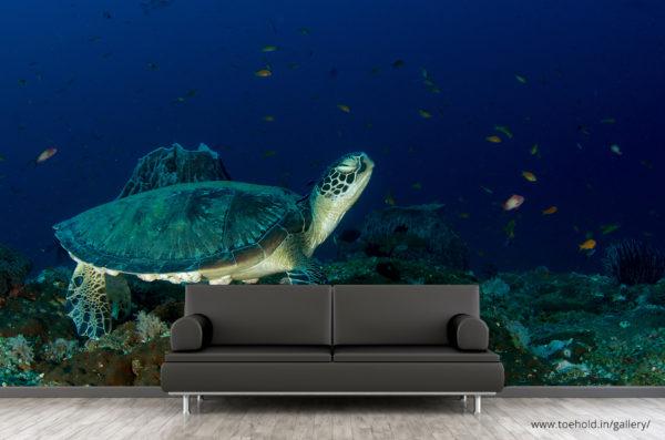 sea green turtle wallpaper