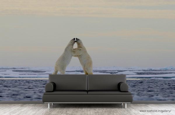 polar-bear-play-wallpaper