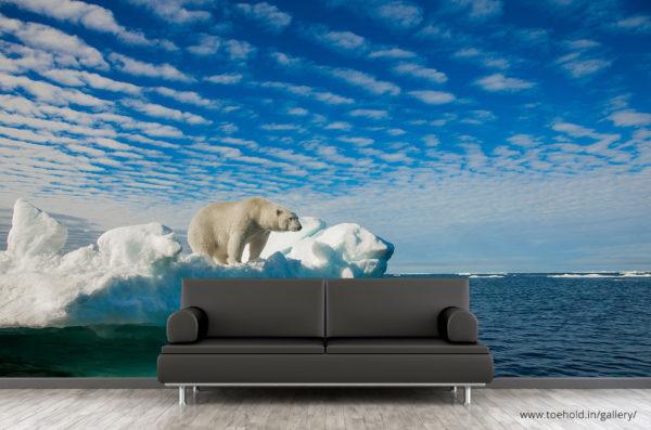 polarbear wallpaper