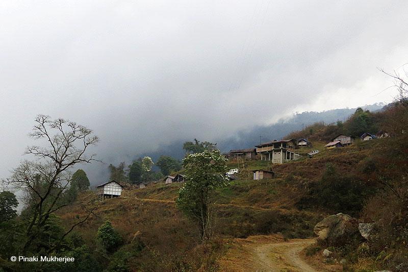 Lama Camp, Eaglenest