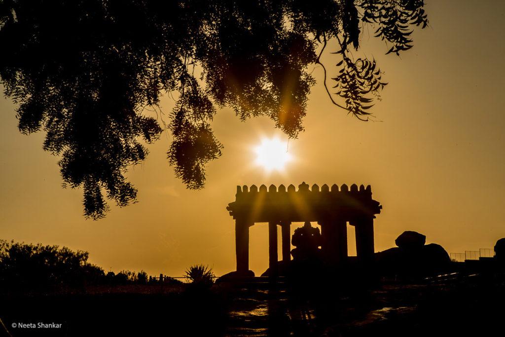 © Neeta Shankar