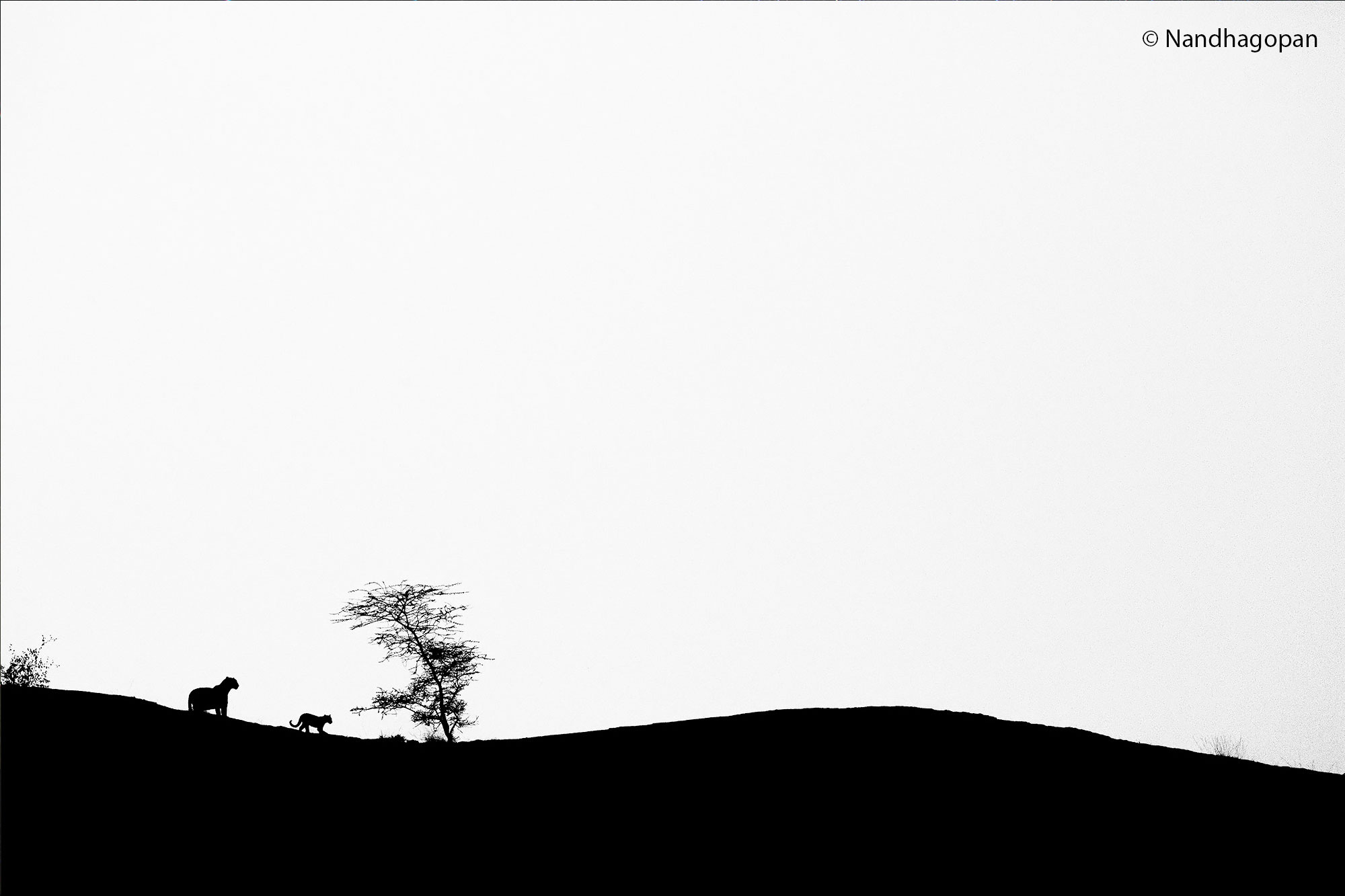 © Nandhagopan