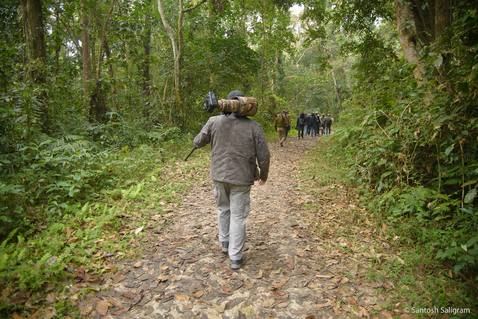 Walk in Gibbon Sanctuary