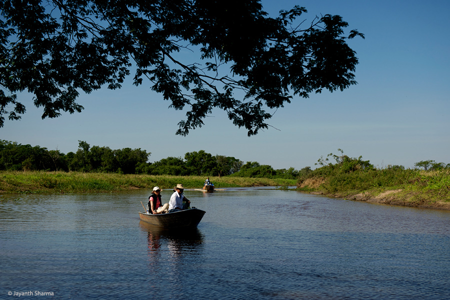Boating in the Pantanal