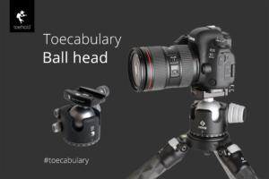 Toecabulary - Ball Head