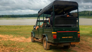 Kabini Safari