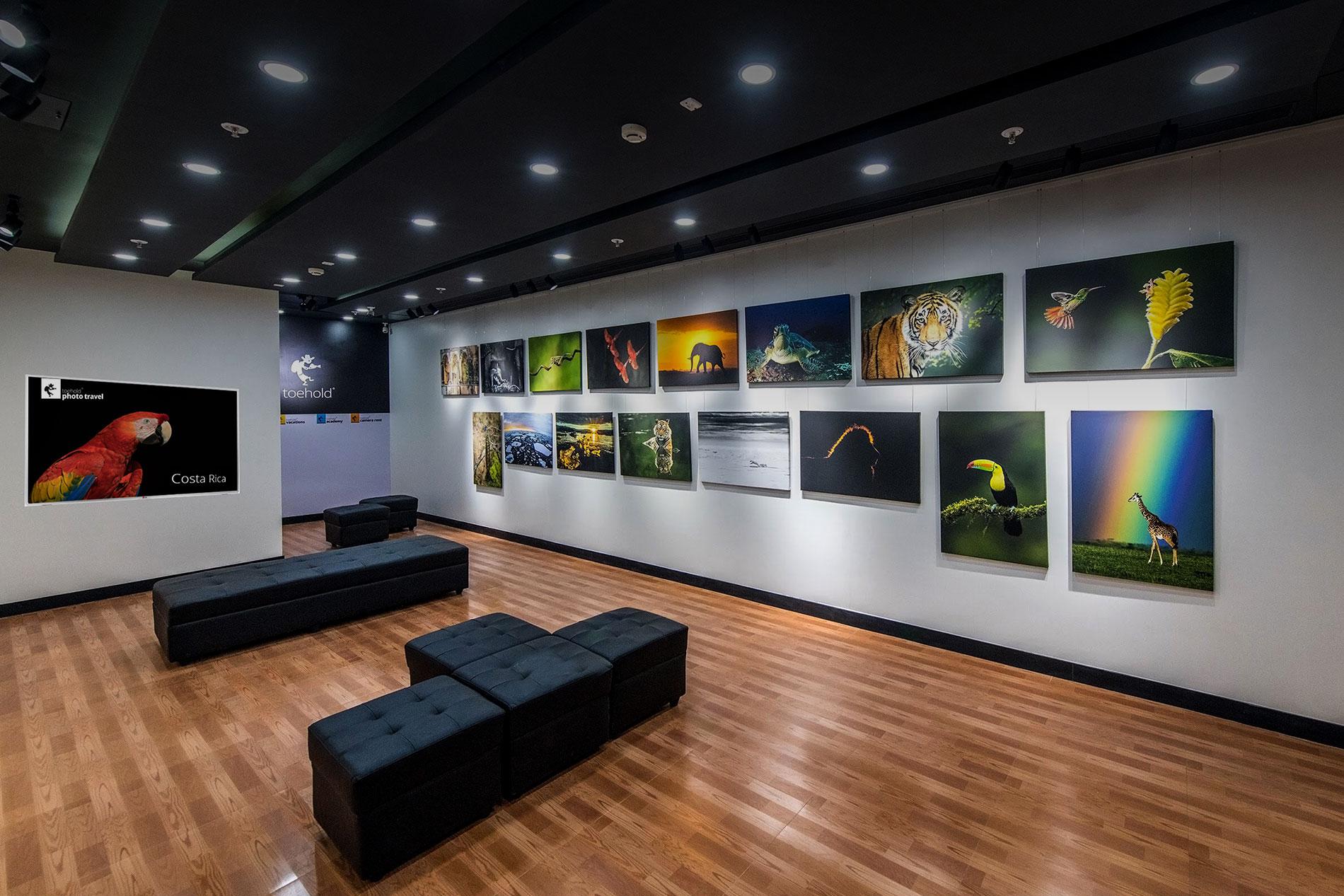 Toehold Mumbai Gallery